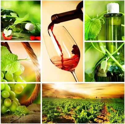 Glamourland Wijn