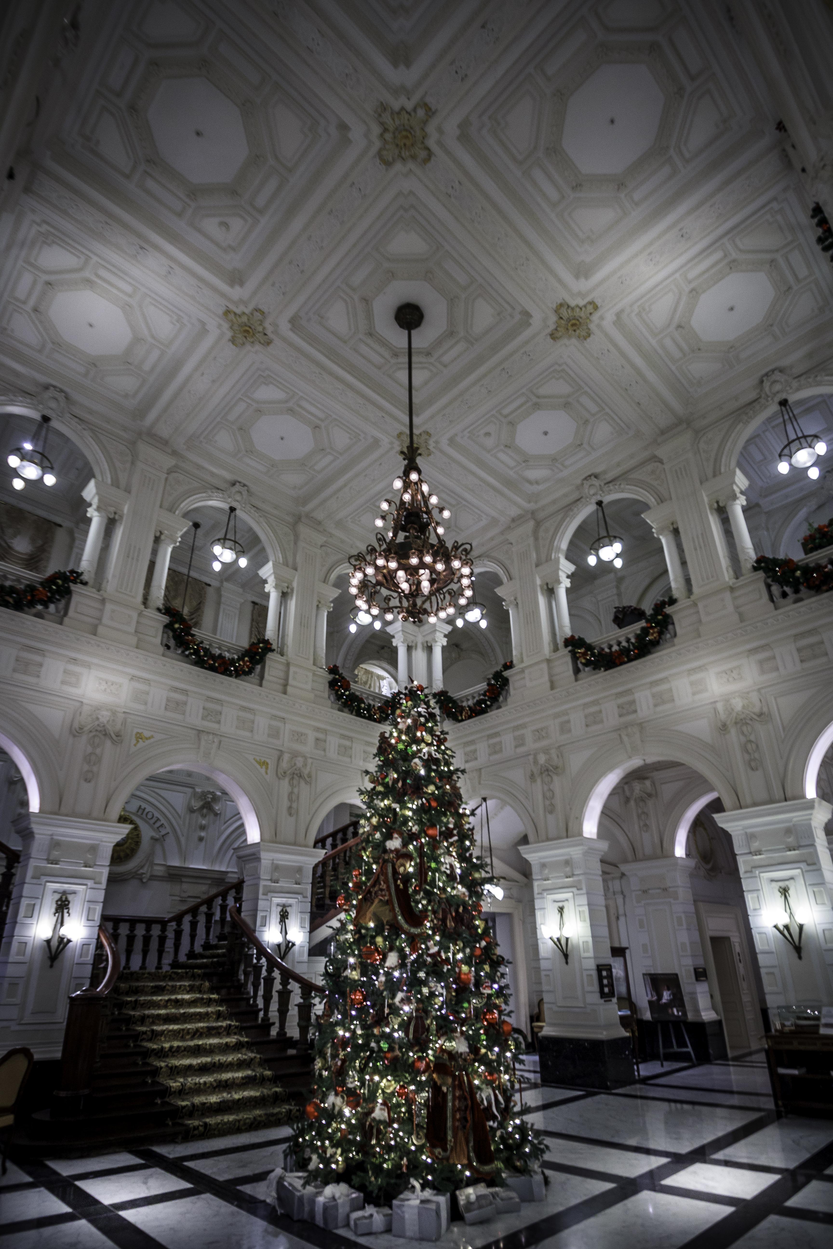 Society NL doopt kerstboom in Amstel hotel