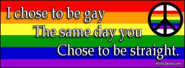 Gay (10)