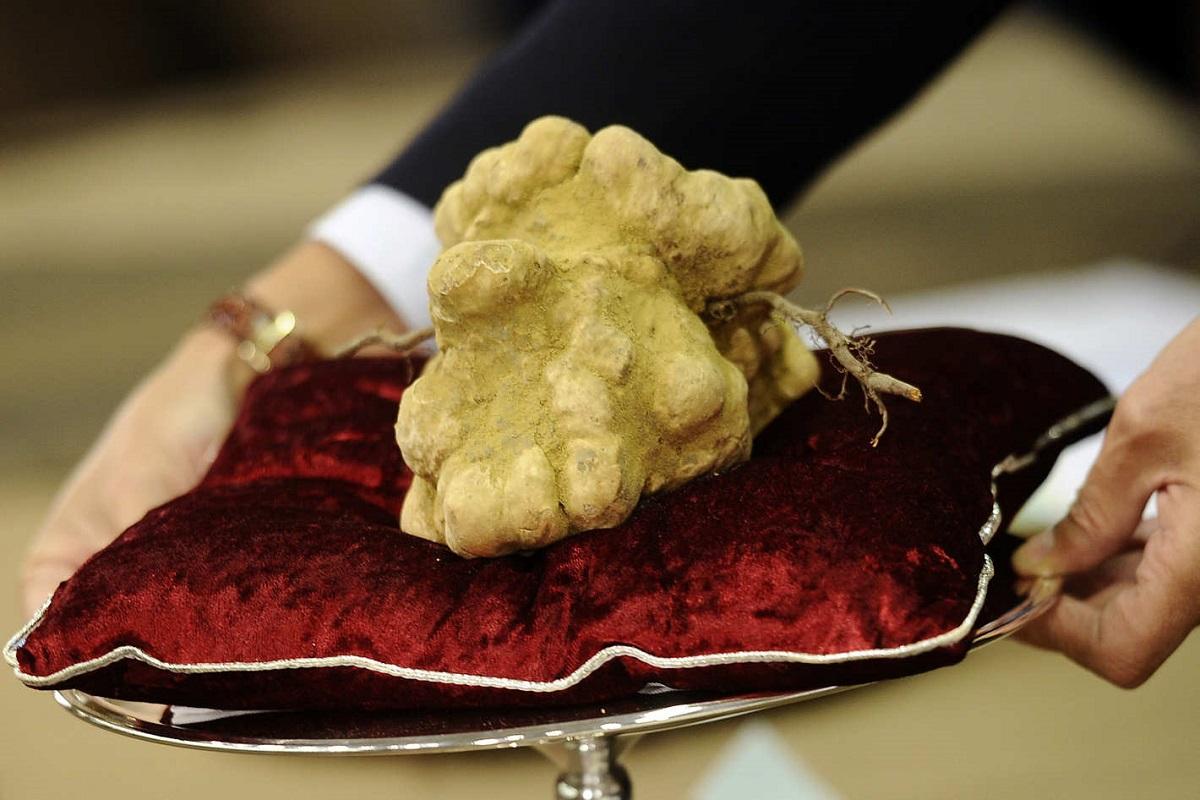 glamourland-truffel