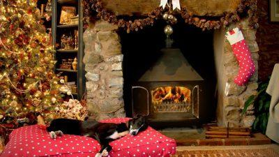 Eerste hulp bij kerststress: Zij weten raad!