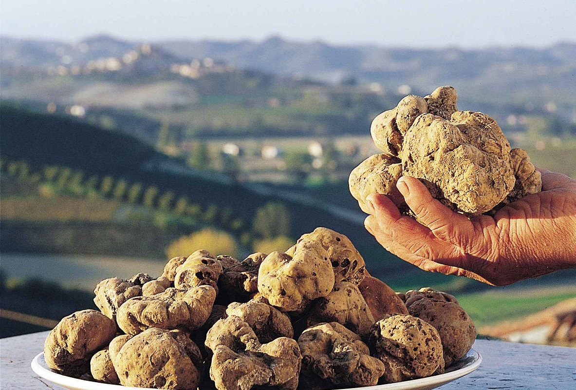 Glamourland-truffel-wit