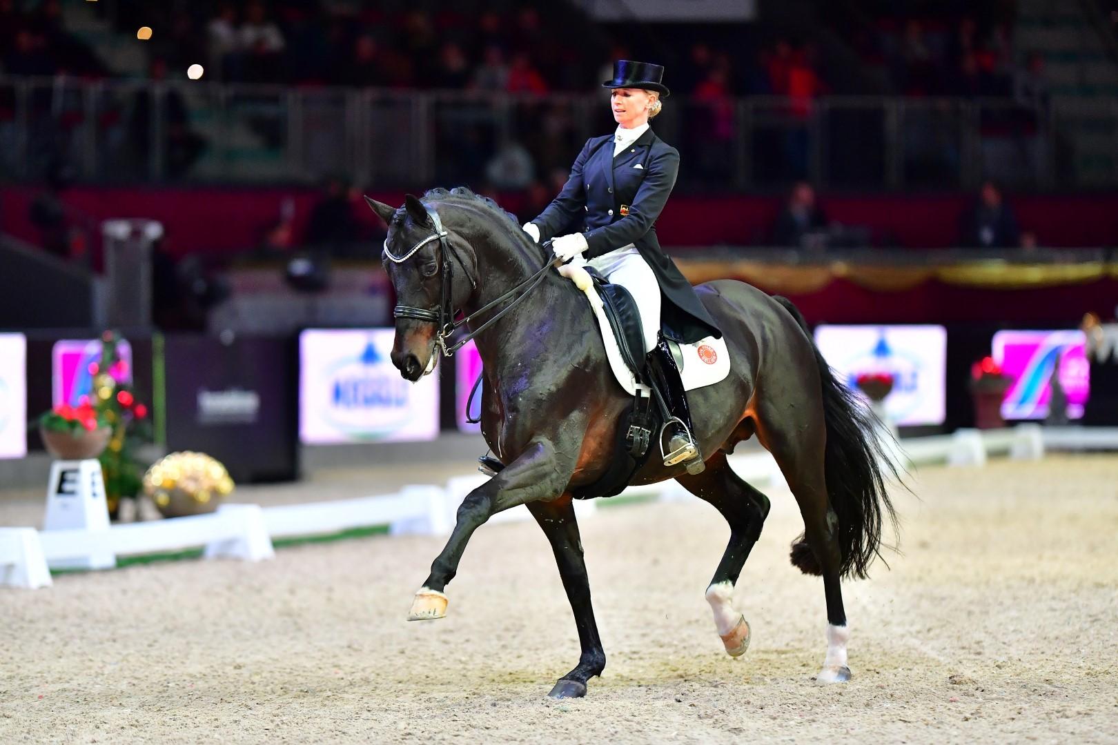 Amadeus Horse Indoors Salzburg 2017
